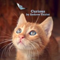 Curious, by Andrew Thiriot, Now Add Music, Add Music to Videos, Films, Podcasts, Commercials, Video games, Audiobooks, ads, Royalty Free Music